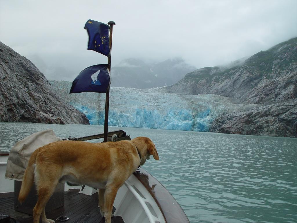 Alaska - Glacier