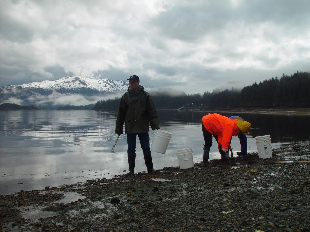 Alaska - Clam digging
