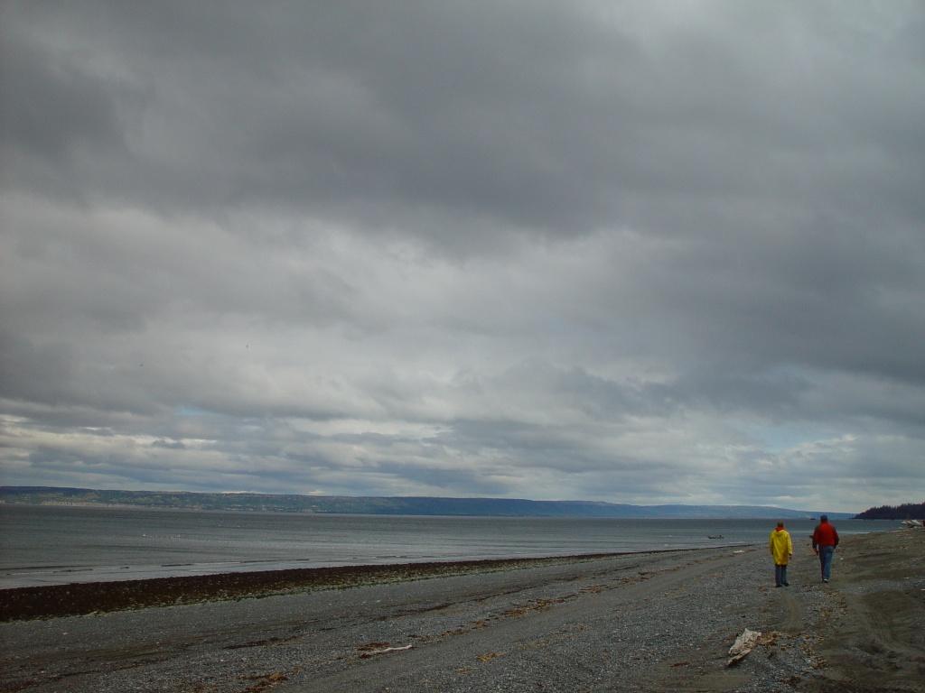Alaska - Beach